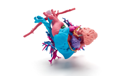 3d-tisk-srdce(1)