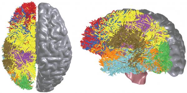 Nová počítačová architektura vytvořená po vzoru lidského mozku